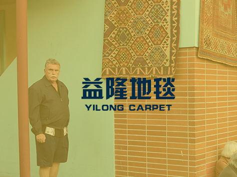 案例:河南益隆地毯有限公司